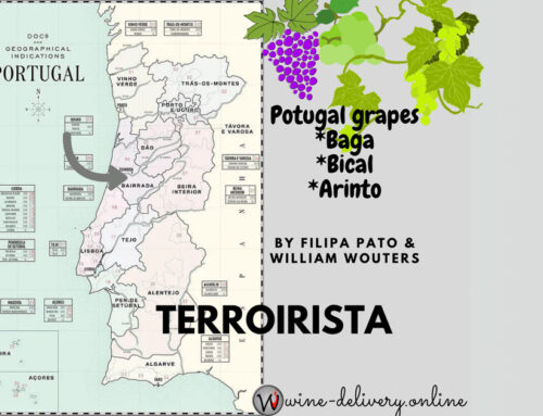 Portugal wine-tasting from Bairrada with William Wouters